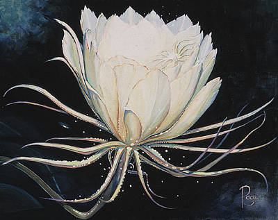 Painting - cereus I by Donna Page