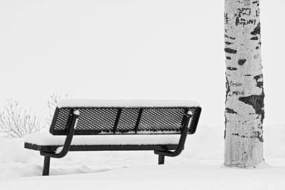 Bench Photograph - Cesar Melai Love In The Snow Bw by James BO  Insogna
