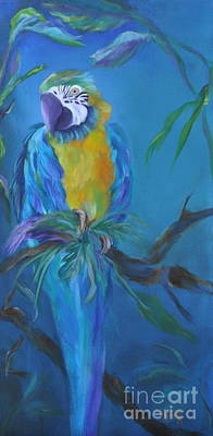 Macaw Painting - Cha Cha by Lynn Rattray