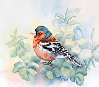 Painting - Chaffinch In Grass by Inese Poga
