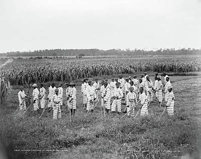 Photograph - Chain Gang, C1903 by Granger