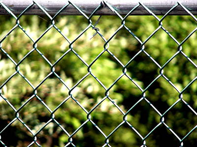 Photograph - Chain Link Fence by Pamela Hyde Wilson