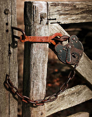 Fence Photograph - Chained by Marcia Colelli