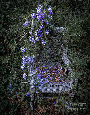 Photograph - Chair And Flowers by Ken Frischkorn
