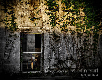 Photograph - Chair In The Widow by Ken Frischkorn