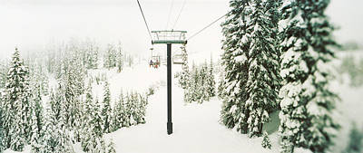 Chair Lift And Snowy Evergreen Trees Art Print by Panoramic Images