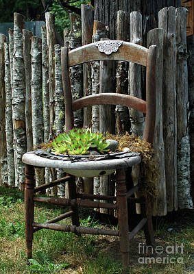 Photograph - Chair Planter by Ron Roberts