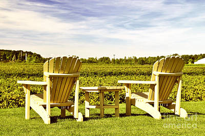 Wine Royalty-Free and Rights-Managed Images - Chairs overlooking vineyard by Elena Elisseeva