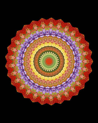 Chakra Spin Art Print by Barbie Wagner