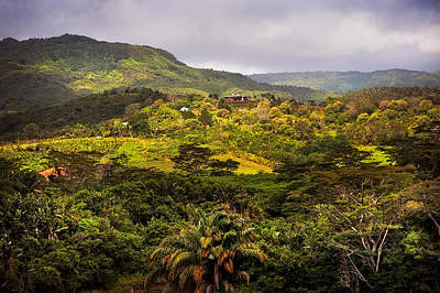 Photograph - Chamarel. Mauritius by Jenny Rainbow