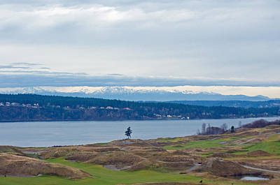 Photograph - Chambers Bay Golf Course by Tikvah's Hope