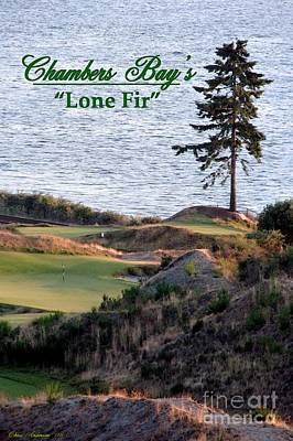 Photograph - Chambers Bay's Lone Fir - Chambers Bay Golf Course by Chris Anderson