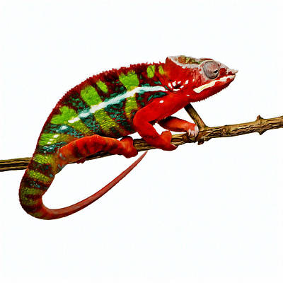Hidden Objects Painting - Chameleon 1 by Lanjee Chee