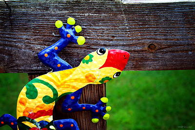 Photograph - Chameleon by Greg Simmons
