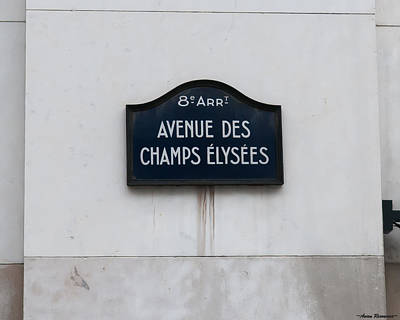Photograph - Champs Elysees by Avian Resources