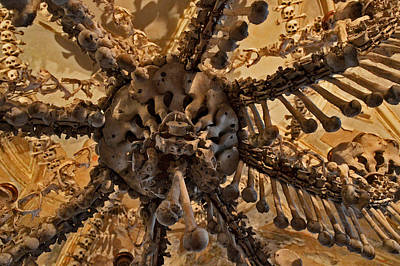 Chandelier Made Of Bones And Skulls. Original by Andy Za