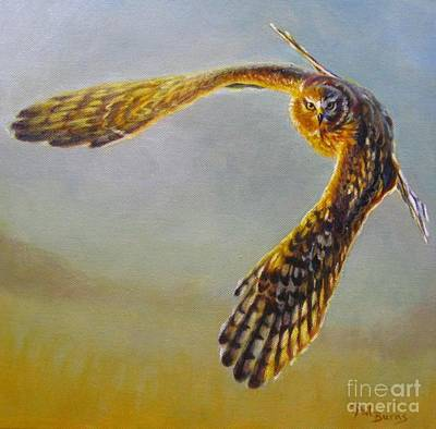 Harrier Painting - Change Of Direction by Pat Burns