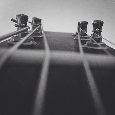 String Instruments Photograph - Strings by Lauren Brumley