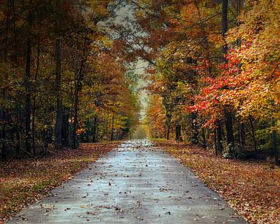 Photograph - Changing Season 2 - Autumn Landscape by Jai Johnson