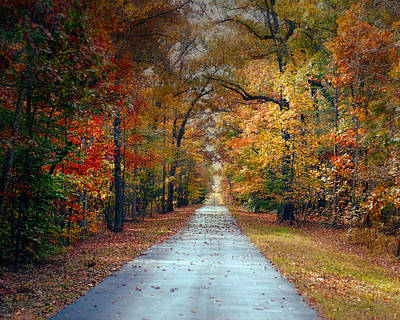 Autumn Scene Photograph - Changing Season - Autumn Landscape by Jai Johnson