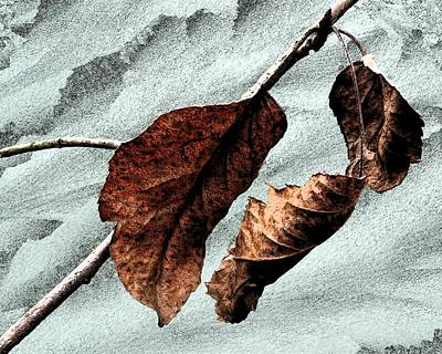 Digital Art - Changing Seasons by I'ina Van Lawick