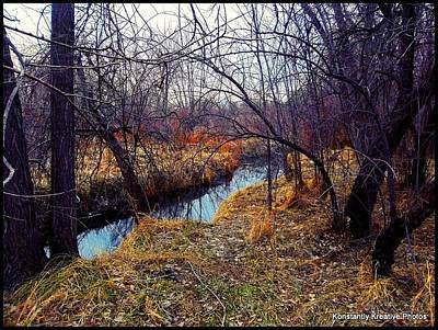 Photograph - Chaotic Tranquility by Misty Herrick