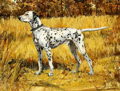 St. Louis Painting - Chap Dalmation Dog by Don  Langeneckert