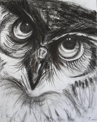 Barnyard Drawing - Charcoal Owl  by Naomi McQuade