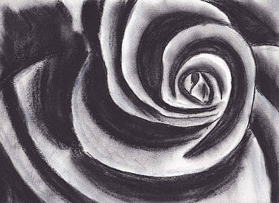 Rose Drawing - Charcoal Rose by Rebecca Schoof