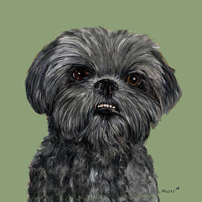 Shih Tzu Painting - Charcoal Shih Tzu  by Dale Moses