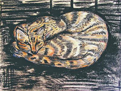 Charcoal Tabby Art Print