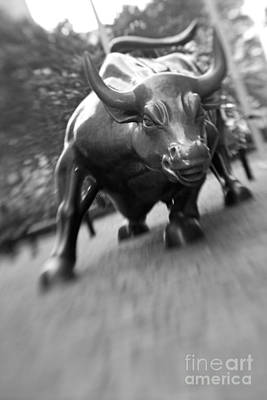 Charge Photograph - Charging Bull 2 by Tony Cordoza