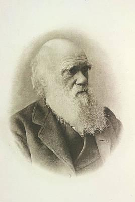Charles Darwin Art Print