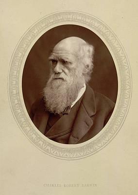 Charles Robert Darwin Art Print