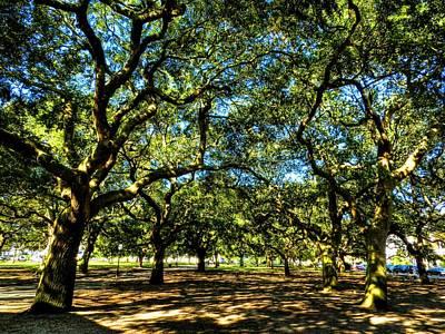 Photograph - Charleston 009 by Lance Vaughn