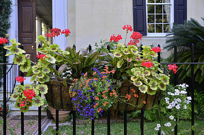 Photograph - Charleston Flower Box 2 by Allen Beatty