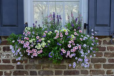 Photograph - Charleston Flower Box 5 by Allen Beatty