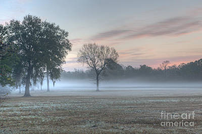 Photograph - Charleston Foggy Sunrise by Dale Powell