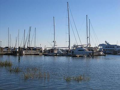 Photograph - Charleston Marina  by Joetta Beauford