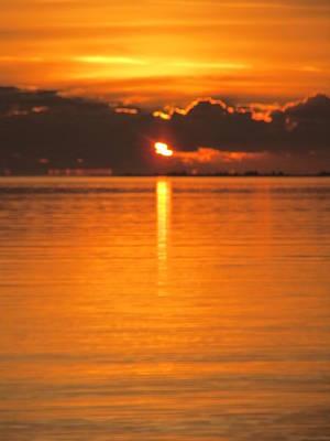 Art Print featuring the photograph Charleston Morning Sunrise  by Joetta Beauford