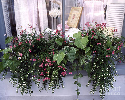 Photograph - Charleston Romantic Floral Window Box Flowers Vintage Cottage Chic Flower Box  by Kathy Fornal