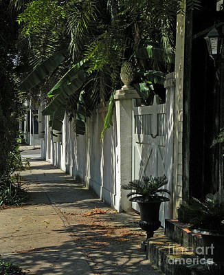 Photograph - Charleston Shade by Deborah Smith
