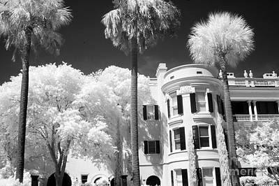 Charleston South Carolina Black White Battery Park Art Print by Kathy Fornal