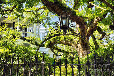 Gas Lamp Photograph - Charleston Villa Garden With Live Oak Tree by George Oze