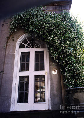 Photograph - Charleston French Quarter White Door With Green Ivy Arch by Kathy Fornal