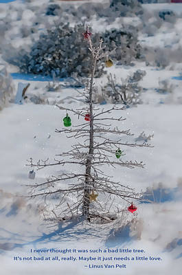New Mexico Photograph - Charlie Brown Christmas Tree by Lou  Novick