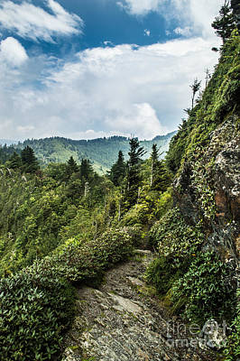 Art Print featuring the photograph Charlies Bunion Trail by Debbie Green