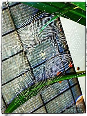 Charlotte's Web Art Print by Meagan Hoelzer