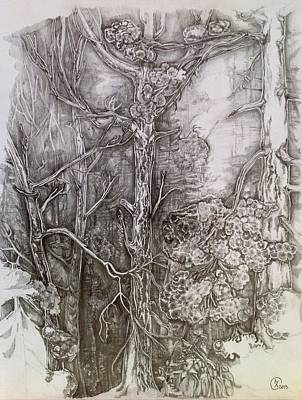 Drawing - Charmed Forest by Iya Carson