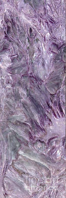 Photograph - Charoite From Siberia by Rudi Prott